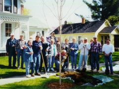 Tree Planting large group